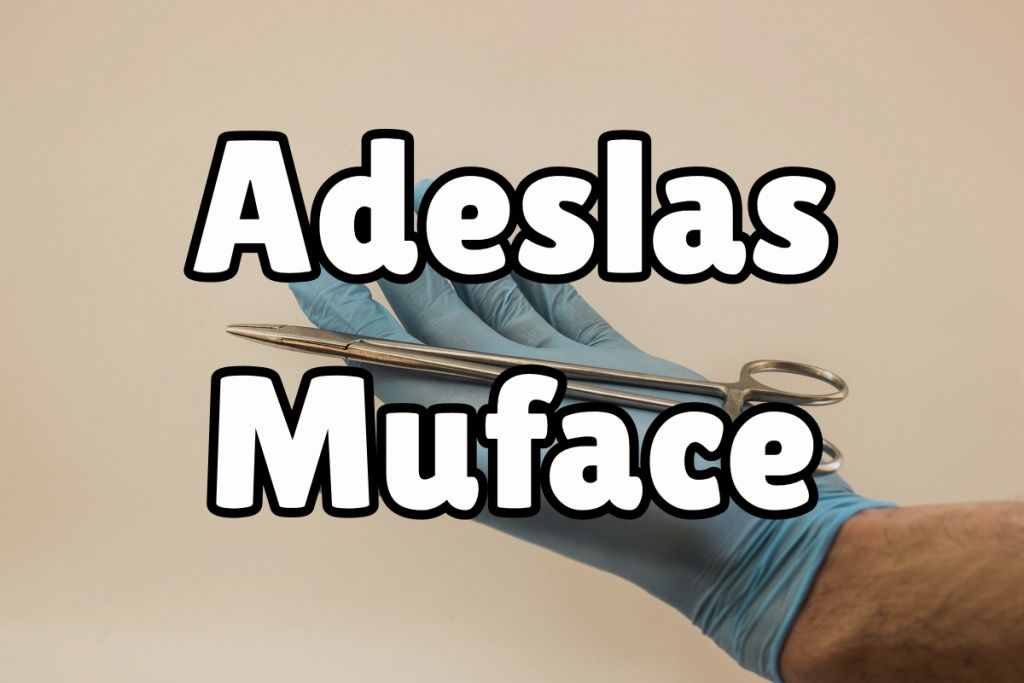 Adeslas Muface