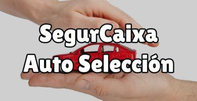 ¿Qué es el seguro de auto Selección?